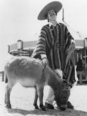 history_donkey